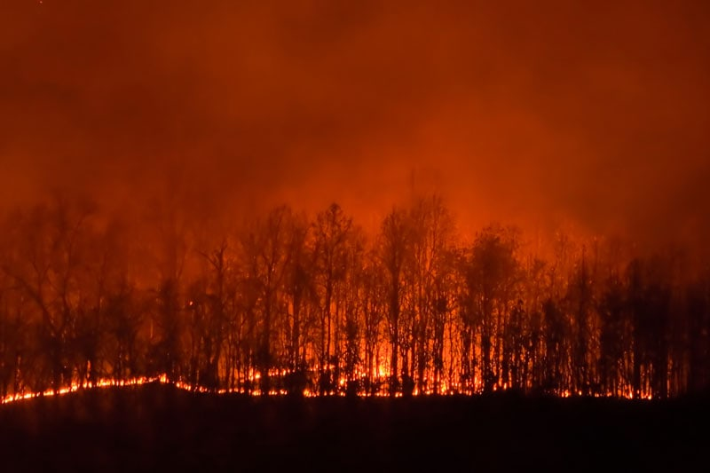 V-IAQ_009-Wildfire-Safety-Tips